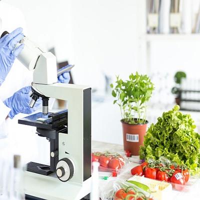 医药及食品解决方案